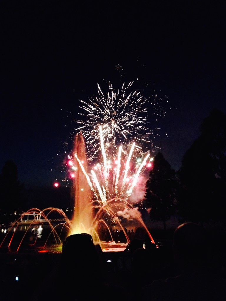 The conference's opening ceremonial fireworks.